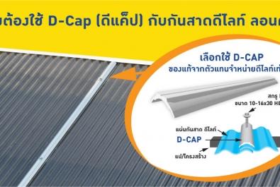 D-CAP (ดีแค็ป) ลิขสิทธิ์เฉพาะกันสาด ตราดีไลท์